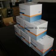 青岛开发区六类网线图片