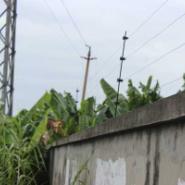 吉安学校脉冲电子围栏系统安装报价图片