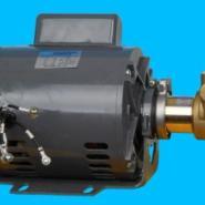 电机高压叶片泵自动售水机配件图片