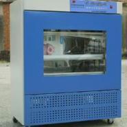 HWHS-250恒温恒湿培养箱图片