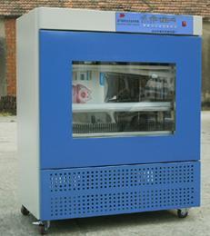 L-HWHS-500智能恒温恒湿培养箱