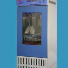 BS-1E-150智能振荡培养箱