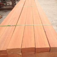 进口红梢木价格黄梢木价格图片
