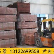 沈阳山樟木价格图片