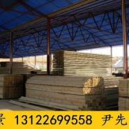 葫芦岛山樟木厂家图片
