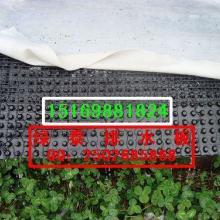固原地下室排水板HDPE车库排水板厂家15169881824批发