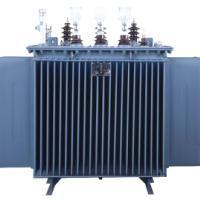 变压器厂家直销油浸式10KV配电变压器_S11变压器S13变压器
