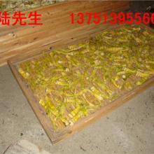供应竹笋烘干机干燥设备