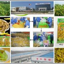 供应代加工贴牌各种农副产品