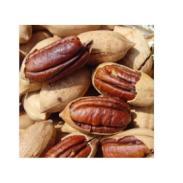 新疆特产坚果零食碧根果美国核桃图片