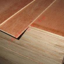 上海精翔木业供应平安树多层板胶合板