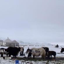 高温天需注意什么【新疆旅游官方网】