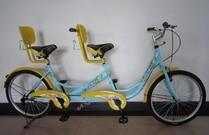 捷安特20寸双人自行车