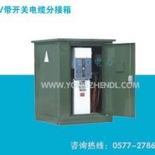 供应10KV带开关电缆分接箱、欧式电缆分接箱、分支箱、永珍电力图片
