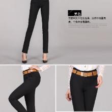 供应显瘦小脚铅笔时尚九分名牌时尚潮裤