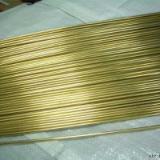供应深圳供应C52100铜合金