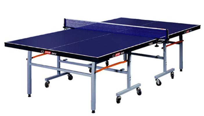 室内乒乓球桌图片/室内乒乓球桌样板图 (3)