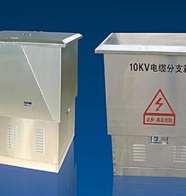 电缆分接箱图片/电缆分接箱样板图 (4)