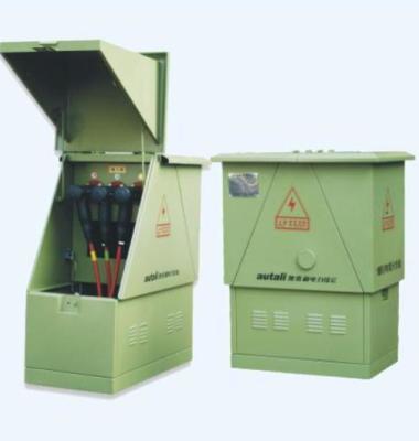 电缆分接箱图片/电缆分接箱样板图 (2)