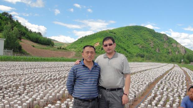 黑龙江天锦食用菌公司