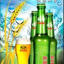 供应燕京荞麦夜场啤酒