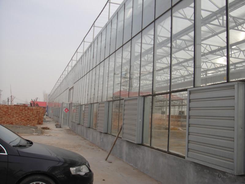 供应农业温室大棚,种植温室大棚,花卉温室大棚,蔬菜温室大棚,