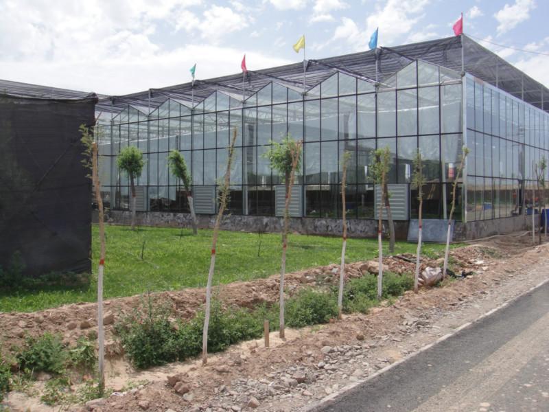 供应玻璃温室,温室大棚,温室大棚工程,温室建设,温室大棚公司,