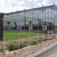 温室大棚建造公司图片