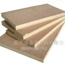 供应18厘胶合板多层板