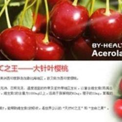 供應針葉櫻桃幹粉哪裏有的賣