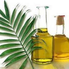 供应棕榈油;厂家直销;大量批发;