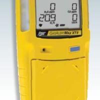 加拿大BW氨气检测仪GAXT-A