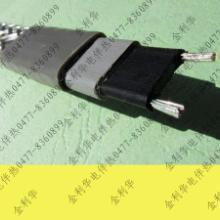 供应内蒙古电伴热,电伴热带,电伴热厂家,电伴热带价格