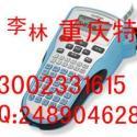 pt-1010手持式标签打号机图片