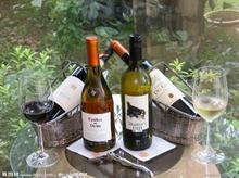 法国红酒进口报检流程|法国红酒进口代理批发
