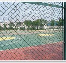 供应标准型运动场围网