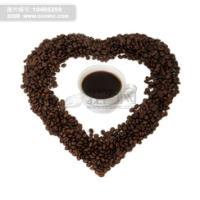 非洲咖啡豆可可豆进口清关/上海