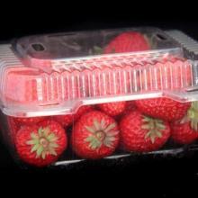 供应江西赣州吉安脐橙吸塑塑料包装厂