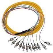 FC12芯束状光纤尾纤图片