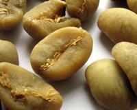 供应非洲咖啡豆可可豆进口清关/上海批发
