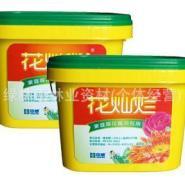 花灿烂家庭观花植物专用1公斤装盒图片