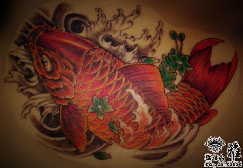 哈尔滨纹身鱼纹身锦鲤纹身鲤鱼纹身图片