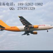 靖江DHL电话图片