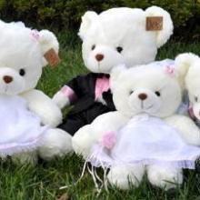供应中号可可熊毛绒玩具大熊儿童玩具批发对对熊玩具批发