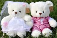 供应大号可可熊毛绒玩具白色小熊一对填写玩具批发