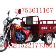 力之星小太子125三轮摩托车图片