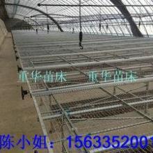 温室移动苗床大棚移动式苗床移动式养花育苗床
