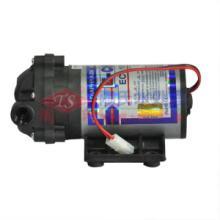 原装正品50G三角洲泵50加仑增压泵RO泵纯水机专用水泵批发
