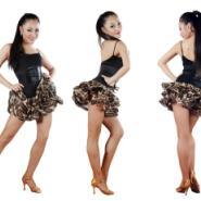 艾美雪纺蓬蓬拉丁连体裙子练习舞服图片