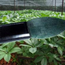 供应叶面湿度传感器